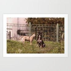 Street dog family Art Print