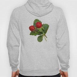 Indian strawberries on birch bark Hoody