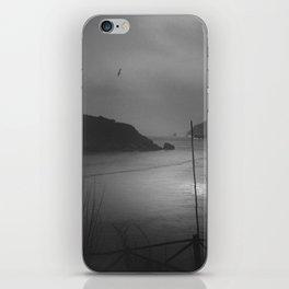 Viaje al sur iPhone Skin