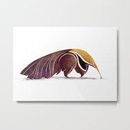 Anteater Metal Print