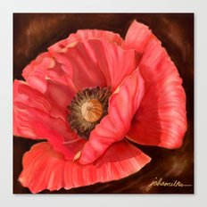 Red Poppy Two Canvas Print