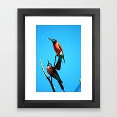 bee-eater 3 Framed Art Print
