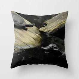 South America Throw Pillow