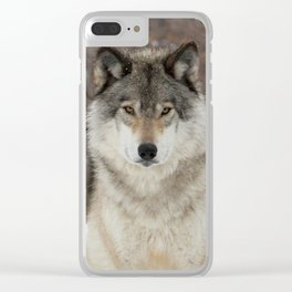 I've heard it all before Clear iPhone Case