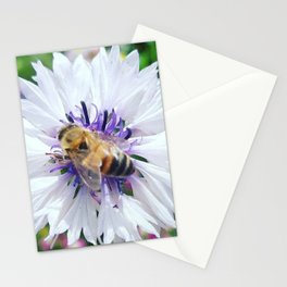 Blessed Bee Stationery Cards
