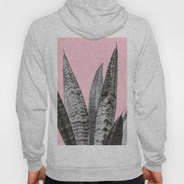 Gray snake plant in pink Hoody