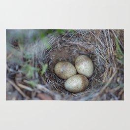 Horned lark nest and eggs - Yellowstone National Park Rug