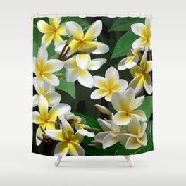 Plumeria Flowers Shower Curtain