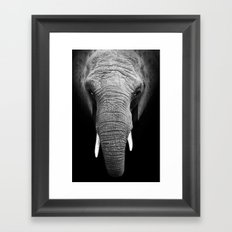 Black and white elephant Framed Art Print