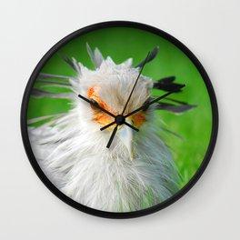 Sagittarius serpentarius 27 Wall Clock