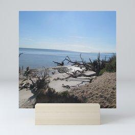 The Boney Trees on the Beach Mini Art Print
