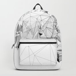 Elevate Backpack