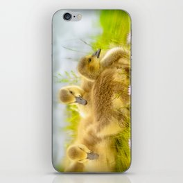Goslings iPhone Skin