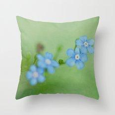I've got the blue Throw Pillow