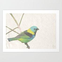 Tweety Art Print