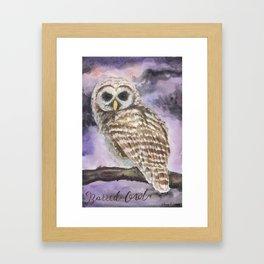 Juvenile Barred Owl Framed Art Print