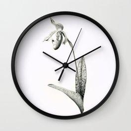 Venus-slipper orchid Paphiopedilum Supersuk x Raisin Pie Wall Clock
