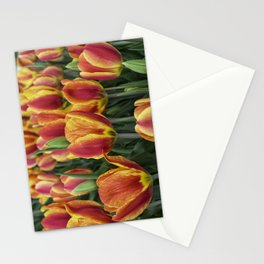 Orange Tulips on Cape Ann Stationery Cards