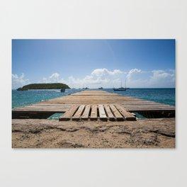 Vieques Canvas Print