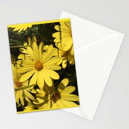Delightful Daisy Stationery Cards