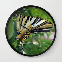 Swallowtail With Partially Closed Wings Side View Wall Clock