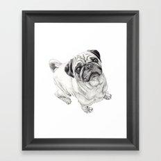 Seymour the Pug Framed Art Print