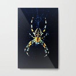 European Garden Spider Metal Print