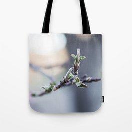Primavera Tote Bag