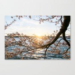 Sun Over the Horizon Canvas Print