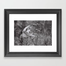 Wilting Flowers Framed Art Print