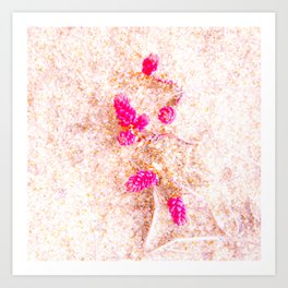 flowers in the dunes Art Print