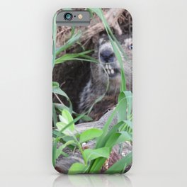 Sheltering In #nature #groundhog  iPhone Case