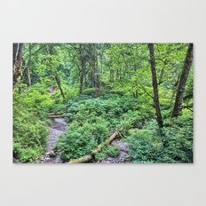 Winding Down the Hills Canvas Print