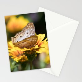 White Peacock Butterfly on Flower Stationery Cards