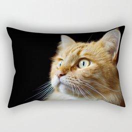 Portrait of ginger cat close-up. Rectangular Pillow