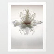 floating into the light Art Print