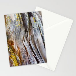 Relic of the Forest Stationery Cards