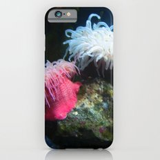 Anemone 2 iPhone 6s Slim Case