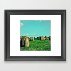 Bale Out Framed Art Print