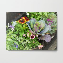 Potted Fall Flowers Metal Print