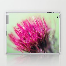 Star Burst Laptop & iPad Skin