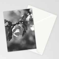 In The Sunlight (Monochrome) Stationery Cards