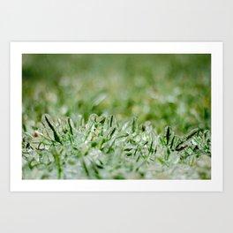 Icy Grass Art Print