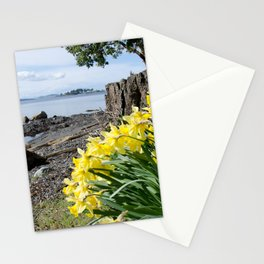 DAFFODILS OF SPRING IN THE SAN JUAN ISLANDS Stationery Cards