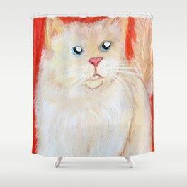 Jace the Ragdoll Shower Curtain