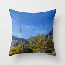 Desert Flowers in the Anza-Borrego Desert State Park, Southern California Throw Pillow