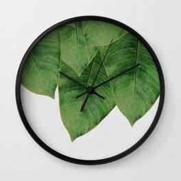 Banana Leaf III Wall Clock
