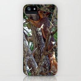 Hang Loose Squirrel 1 iPhone Case