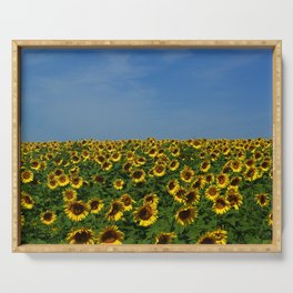 Sunflowers meet the sky 8819 Serving Tray