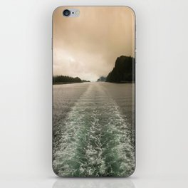 Night or Day? iPhone Skin
